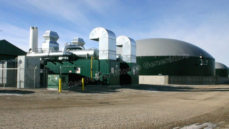 Ettes Power 1MW 2MW CAT MAN MWM Biogas Digester Gas Power Plant CCHP Ettespower Group